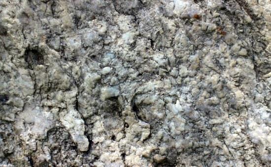 radisavljevic granit kamenorezac beograd